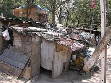 Homeless Poor Cardboard Houses In Mexico Www Picsbud Com